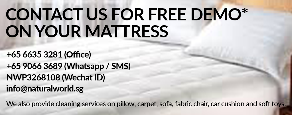 Mattress Cleaning Demo